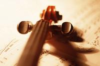 violin_01_s.jpg